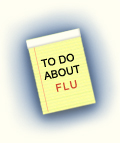 To Do About Flu